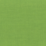 Modern Solids Brights 2 Shamrock