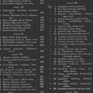 Encyclopedia Historica Black Table of Contents