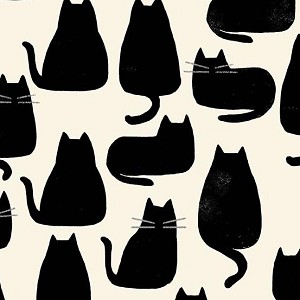 Home Whiskers Chat Noir